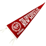Pennant Univ of New Mexico Alumni 9x24