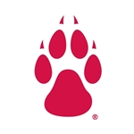 SDS Dizzler Decal UNM  Small Paw